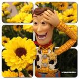 4. @camposwell. O goiano Wellington Campos ganhou destaque na rede social postando fotos do Woody, de 'Toy Story', em situações inusitadas, muitas vezes inteagindo com outros personagens. Campos tem mais de 2 mil seguidores, incluindo a apresentadora Oprah Winfrey e a cantora Alicia Keys.
